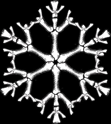 Śnieżynka Ona Ł