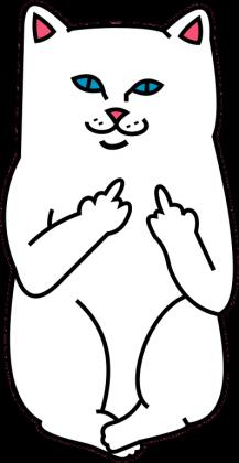 Eko Torba Ripndip cat