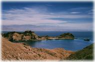 Kubek Morze #4