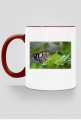 Kubek Motyl #2