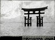 Koszulka Itsukushima Jinja. Japonia.