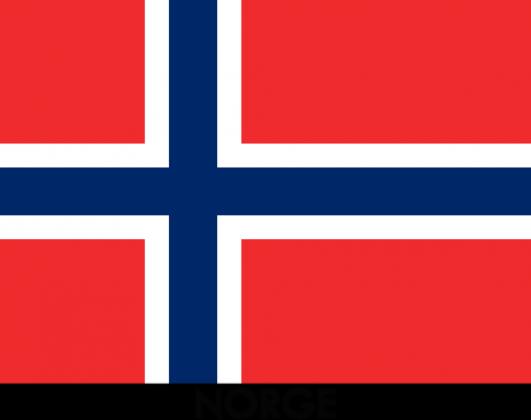 Koszulka z flagą Norwegii.