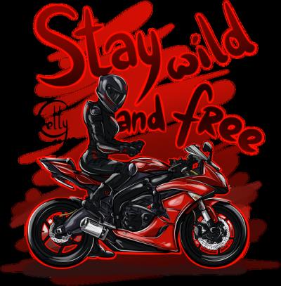Czerwone Kawasaki Ninja
