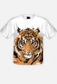Tygrys fullprint męski 2