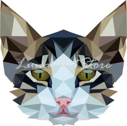 Bluza damska kot geometryczny