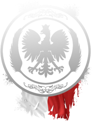 Polski orzeł - bluza