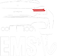 GTRS4 EMS 16 (t-shirt) jasna grafika