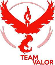 Team Valor - Black/White