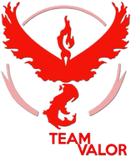 SMALL Team Valor - Black/White
