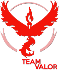 SMALL Team Valor Woman - Black/White