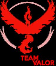Kubek Team Valor