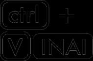 CTRL + V INAI Poduszka