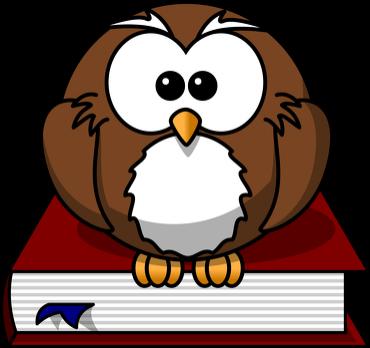 Plecak OWL