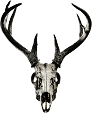 Classic T-shirt - deer skull vol. 4