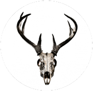V-neck - deer skull vol. 3