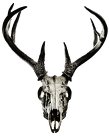 V-string - deer skull vol. 2 (back logo)
