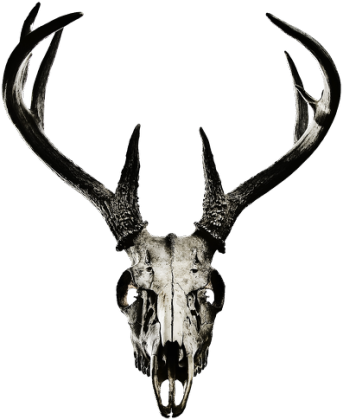 V-neck - deer skull vol. 2