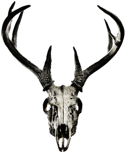 Small bag - deer skull