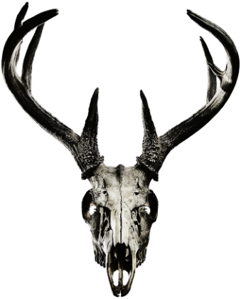 Classic T-shirt - deer skull vol. 2