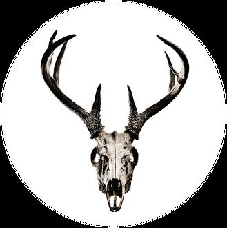 Hoodie #1 - deer skull vol. 3