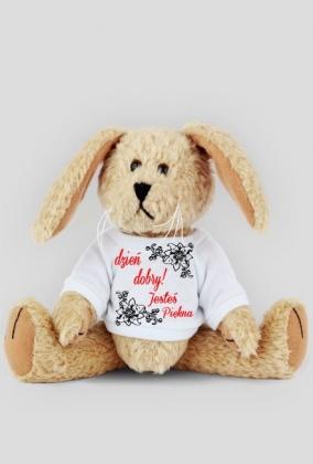 dzień dobry-pluszowy królik