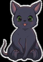 Kubek - Kotek / Little Cat