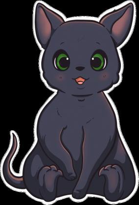 Worek - Kotek / Little Cat