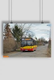 Plakat Solaris Urbino 8.6