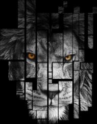 Pixel lion T-shirt męski