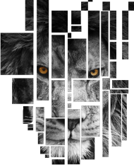 Pixel lion - bluza męska