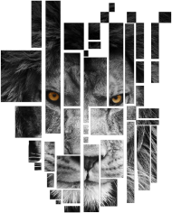 Pixel lion- męski bezrękawnik