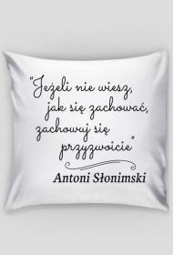 Poszewka na poduszkę - Cytat, A. Słonimski