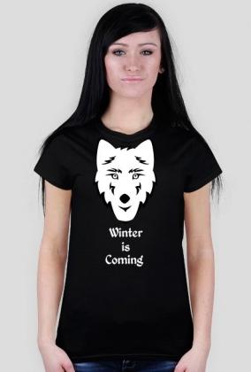 Koszulka damska - Winter is Coming