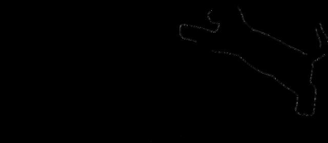 Koszulka DACHOWIEC DAMSKA (czarny nadruk)