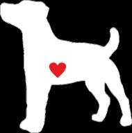 Męska bluza - Russell Terrier
