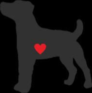 Męska koszulka SLIM - Russell Terrier - ciemny