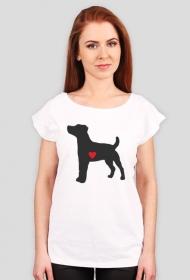 Damska koszulka (wycięcie) - Russell Terrier - ciemny