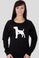 Damska bluza - Russell Terrier
