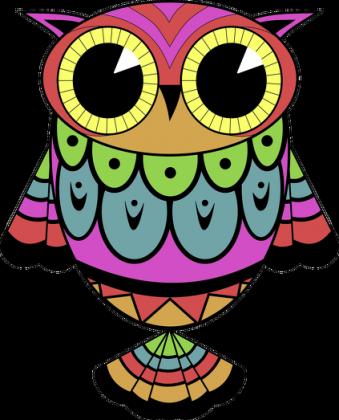 Kubek SOWA kolor