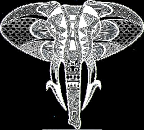 Bluza męska Słoń