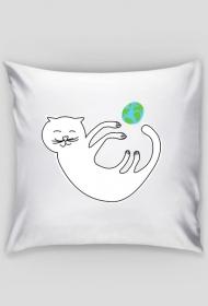 kotek poduszka