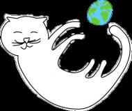kotek śpioch