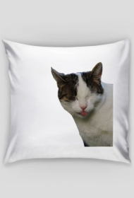 Poduszka Kici Język/Pillow Kitty Tongue