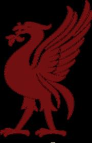 podkładka Liverpool