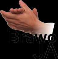 Koszulka z nadrukiem Brawo JA