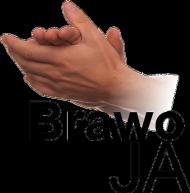 Body z nadrukiem Brawo JA