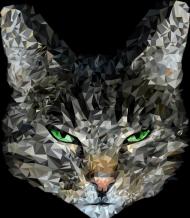 Koszulka z nadrukiem Bokserka z kotem geometrycznym