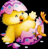podkoszulek Wielkanocny 2