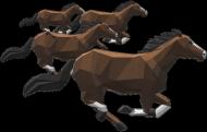 Bluza z Pędzącymi Koniami