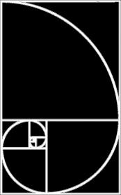 Fibonacci bluza męska ciąg Fibonacciego Petrichor